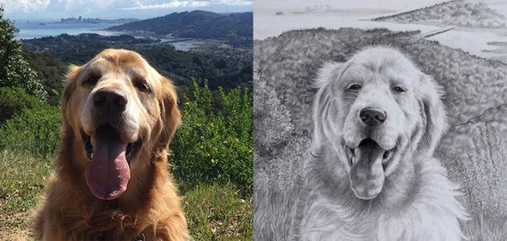 Custom Realistic Pencil Drawing or Portrait - Pet or a Special Memory