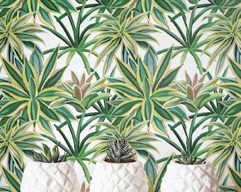 Succulents Wallpaper, Removable Wallpaper, Self-adhesive Wallpaper, Cactus Wall Décor, Jungle Wallcovering - JW_100