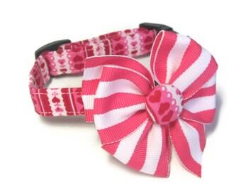 Valentine Dog Collar size Extra Small