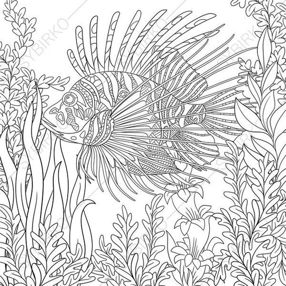 Ocean World. Lionfish. Zebrafish. 3 Coloring Pages. Animal