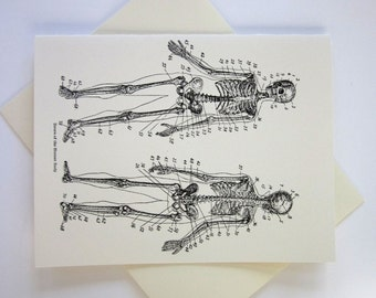 Skeleton Note Cards Set of 10 with Matching Envelopes