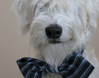 Custom made and  sized dog bow ties!  Shipping included