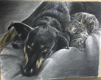 Siri and cat