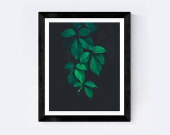 Plant print, Nature print, Tropical Print, wall decor, wall art, printable art, minimalist art, green wall art, nature wall art, flowers