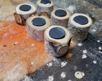 White birch magnets