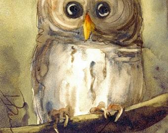 Owl Art Print, Original Bird Art,  8 x 10 Owl Art