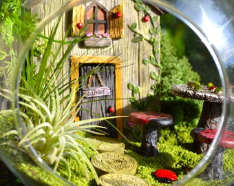 "Ladybug Garden Terrarium Kit ~ 7"" Air Plant Terrarium Kit ~ Fairy Door opens ~ Tic Tac Ladybug Table and Chairs ~ Fairy Garden Kits ~ Gift"