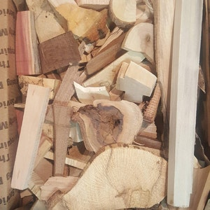 Box of assorted wood chunks from variety of tree species | craft log slice chips | various wood scrap pieces DIY garland wooden art project