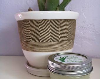 4 oz  Organic Aloe Vera Gel - Salve - Burn Relief - Moisturizing Gel  - Natural and Fresh