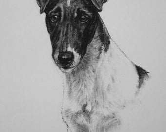 Smooth Fox terrier dog gift dog lover gift LE art print from an original charcoal drawing available unmounted or mounted ready to frame
