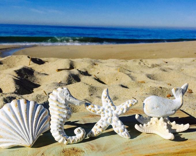 Nautical Drawer Knobs / Nautical Door Knobs / Seashell Knob / Starfish  Knob/ Whale Knob