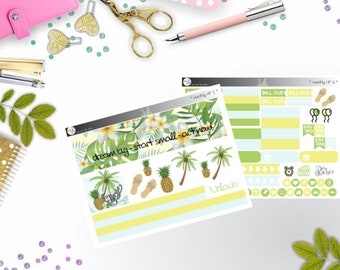 monthly kit - July (Happy Planner Stickers)