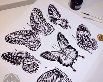 Moths and butterflies print