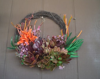 Spring Color 11 inch Growing Succulent Plants Willow Branches Living Wreath Succulent Cuttings Succulent Clippings