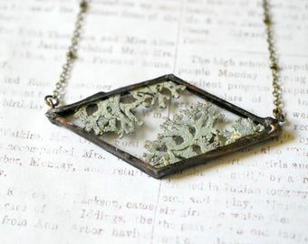 Lichen Jewelry Terrarium Necklace Terrarium Jewelry Lichen Necklace Boho Style Soldered Pendant Moss Jewelry nature lover gift for her grey