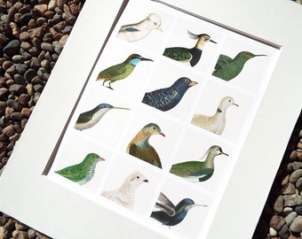 Bird Study Collection of 12 Emerald Green, Sapphire Blue and Creamy White Birds Fine Art Print