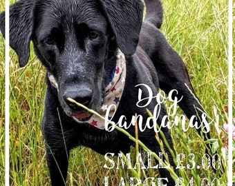 Dog Bandanas (Small Dogs)