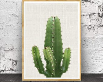 Cactus Print, Cactus Wall Art, Cactus Photo, Cactus Poster, Cactus Art, Printable Cactus, Cactus Decor, Printable Wall Art, Digital Download