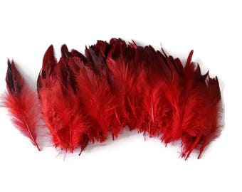 10 x red long feathers