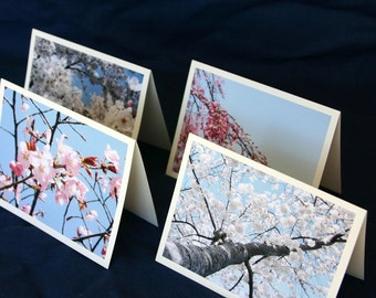 Cherry Blossom Stationery Set, Pink Blue Flower Mothers Day Stationary Set Card Nature Photography Cherry Tree Spring