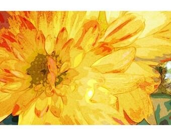 Yellow Mum 2 - nature photography