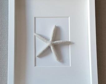 White Starfish Shadow Box