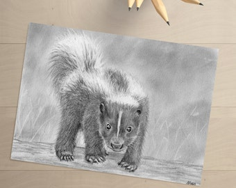 Skunk Drawing - Skunk Art - Skunk Decor - Skunk Wall Art - Baby Skunk - Skunk Picture - Wildlife Art - Wildlife Drawing - Baby Skunk Art