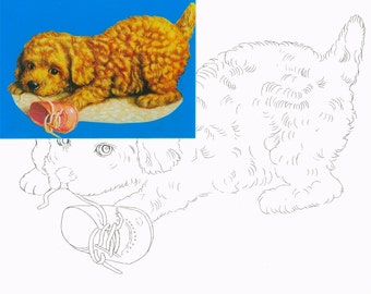 Dog toy, Watercolor painting kit