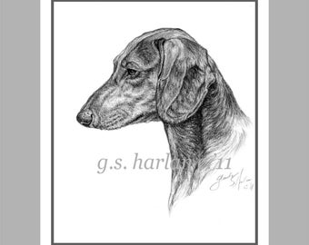 Smooth Dachshund Note Cards - set of Eight