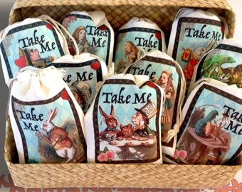 TAKE ME Alice in Wonderland Party Favor Bags 3x5 | 4x6 | 6x8 | 10 Color Designs | Bridal Baby Shower Mad Hatter Tea | Birthday 15 Favor Bags