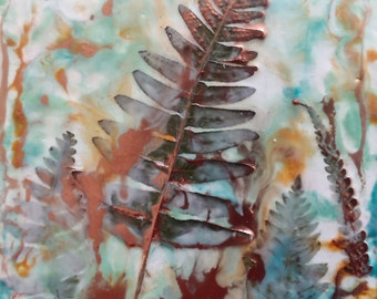 Ferns in the hedgerow