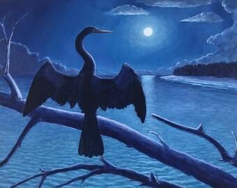 Blue Anhinga