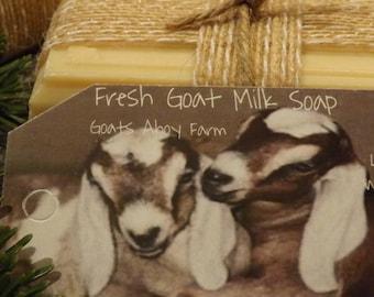 Lavender and Honey Oatmeal Fresh Goats Milk Soap w/ Shea Butter