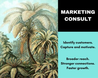 Marketing Consultation - Social Media - Business Coaching - Etsy Writing Service - Etsy Copywriting Service - Copy Writer - Ask For 50% Off!