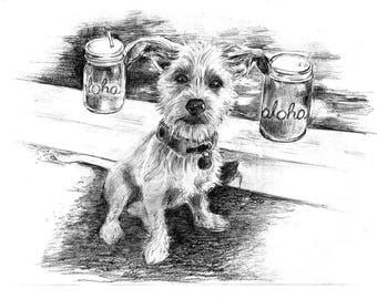 Custom Sketch Art Pet Portraits
