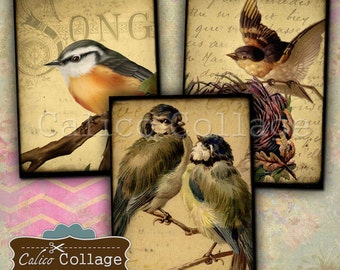 Vintage Birds 2.5x3.5 ATC Size Digital Collage Sheets 2 Digital Sheets for Tags, Junk Journals, Gift Cards, Jewelry Cards, Decoupage Paper