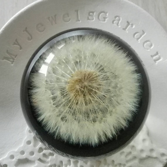 Special gift Dandelion paperweight glass Real whole dandelion paper weight Make a wish Unique gift for Him Resin Sphere Coworker Father gift