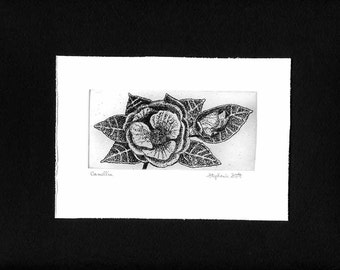 Camellia - Hand Printed,  Black & White, Original Intaglio Etching and Engraving, Limited Edition, Botanical, Flower, Garden, Print