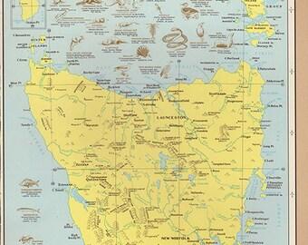 Antique TASMANIA Australia Map 1960s Original Map