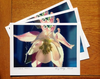 Columbine Angel, Photo Art Card