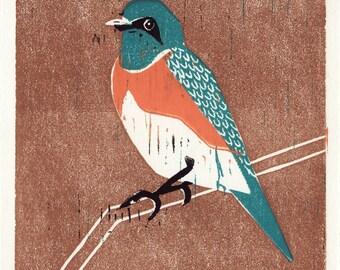 WESTERN BLUEBIRD - Original Hand-Pulled Hand Carved Linocut Wood Block Print 5 x 7, Blue, Orange, Black, Brown, Branch