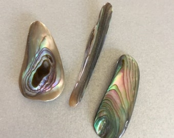 Three Abalone Pieces with NO HOLES