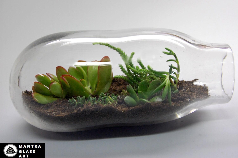Terrarium Recycled Glass Terrarium Blown Glass Terrarium # Terrarium Dangle