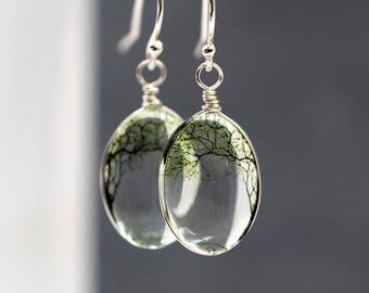 925 Sterling silver bending willow transparent earrings. 3D glass dangling earrings. Nature inspired tree earrings. Gift for her.