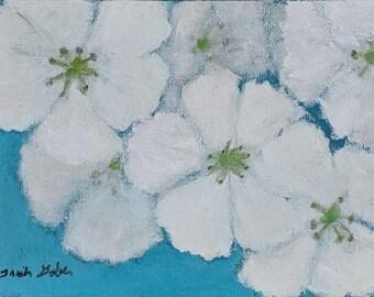 White & Soft