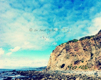 Birds Flying by a Seaside Cliff - 8X10 Ocean Scenic Fine Art Photo