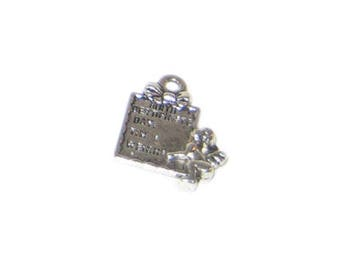 14 x 20mm Silver Birth Certificate Metal Charm - 3 charms