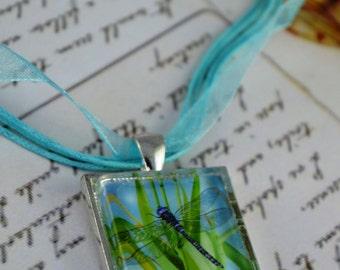 Dragonfly Art Pendant Dragonfly Necklace Glass Tile Dragonfly Art - Black-Tipped Darner