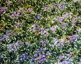 "One Yard Cut Quilt Fabric, Purple Flower Fields ""Wild in The Wilderness"" by Katherine Gardner 4 Riverwoods, Sewing-Quilting-Craft Supplies"