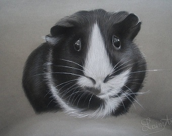 CUSTOM Guinea Pig Cavy Drawing -  From your photo - 5x7 -  Realistic Hand drawn fine art - Charcoal portrait - pet portrait